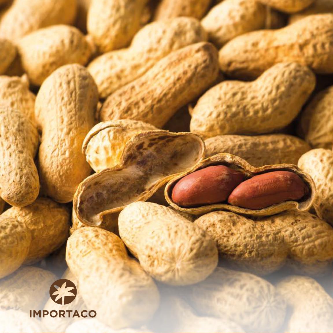 Catalogo cacahuetes_page-0001